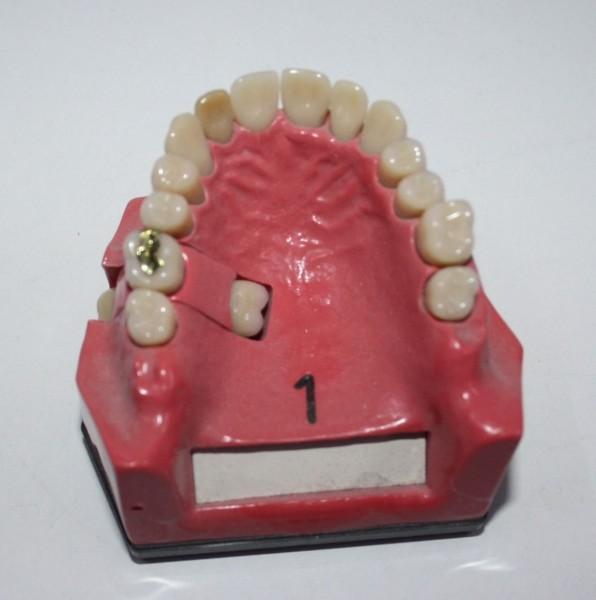 1 x Go Dent Schaumodell Nr. 1 # 12880