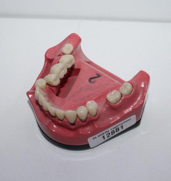 1 x Go Dent Schaumodell Nr. 2 # 12881